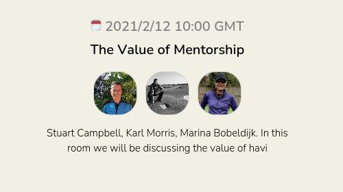 The Value of Mentorship