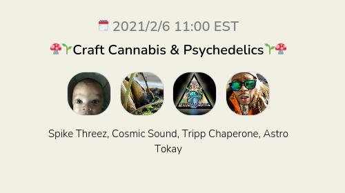 🍄🌱Craft Cannabis & Psychedelics🌱🍄