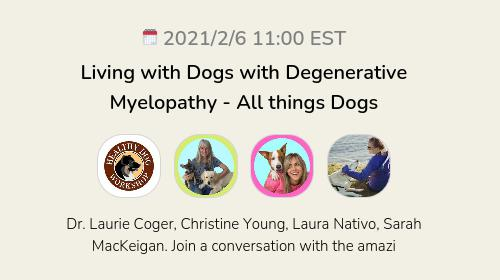 Living with Dogs with Degenerative Myelopathy  - All things Dogs